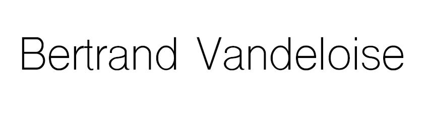 Bertrand Vandeloise